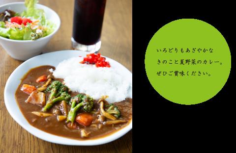 きのこと野菜のカレー